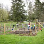 Preparing the Garden Grounds for Spring
