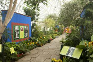 Frida Kahlo Art Garden Life